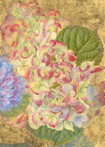 Hydrangea III detail by Jennifer Blair