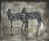 Zebras by Marta Wiley
