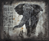 Elephant I by Marta Wiley