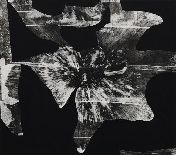 Black Flower 5