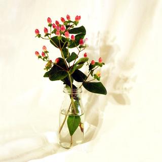 Put An Attic On The Shelf (Pink Flower)