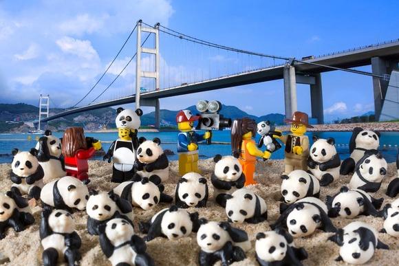 Panda Fever
