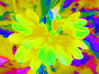 COLORFUL FLOWER, 120 X 160 CM