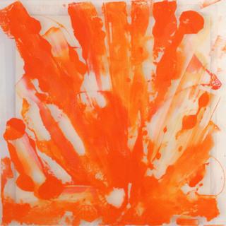 Still Life In Orange
