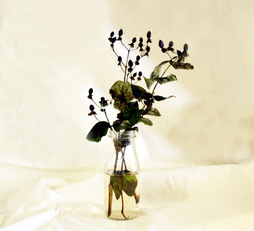 Put An Attic On The Shelf (Dried Flower)