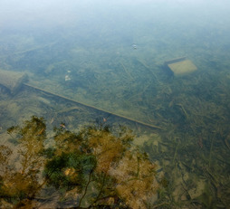 Klartraum vom Nebel – A Lucid Dream of Nebula