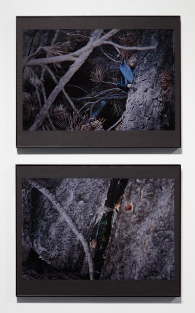 2017, digital C-Print, 51 x 41 cm