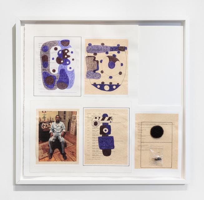 30 x 31 1/4 x 1''; Artist's Hair, Pen, Pencil, Ink. Plastic Bag, Photograph, Thread, Bug, Glue, Paper; 2018