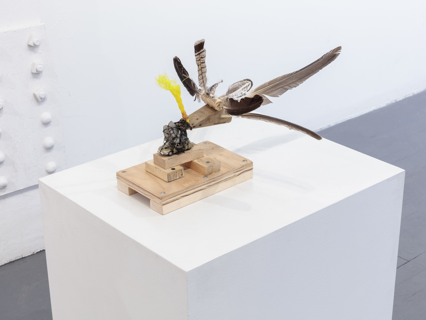11 1/2 x 20 x 16''; Feathers, Rope, Wire, Toy Car, Screws, Wood, Glue, Cork, Stone; 2018