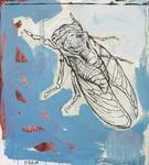 Cicada_i