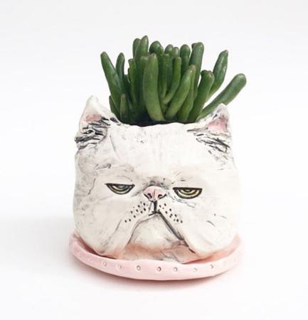Persian_cat_planter