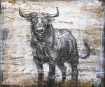 A_bull_portrait