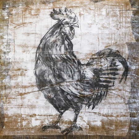 Rooster_portrait
