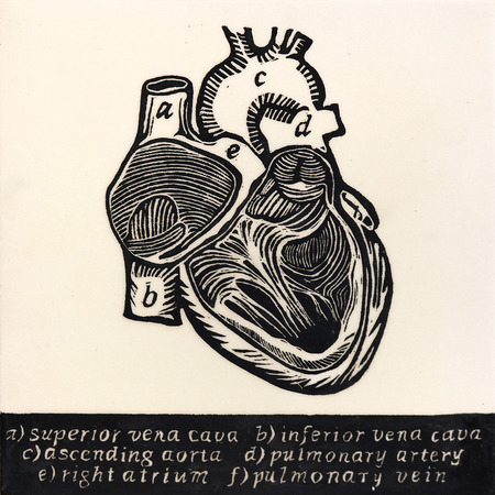 The_knowing_heart