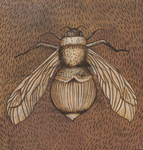 Bumble_bee_on_wood_1