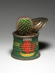 Fresh_cactus_ready_to_serve