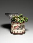 Juicy_succulent