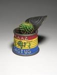 Kaaz_cactus