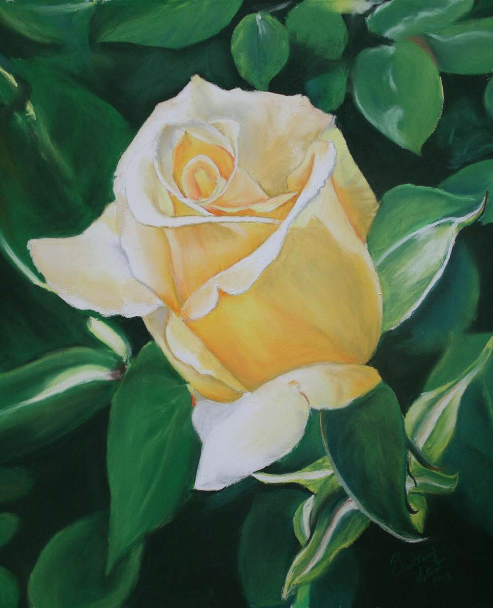 Yellow Rose A
