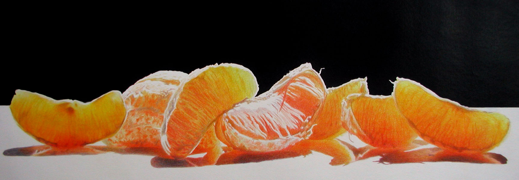 Colored Pencil painting of Orange Segments