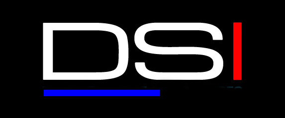 dsi logo