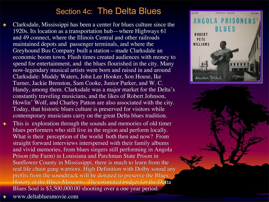 Delta Blues Soul