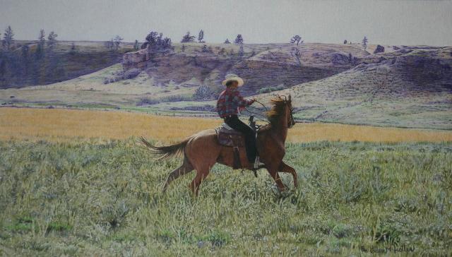 Enrique breaking a horse for us.