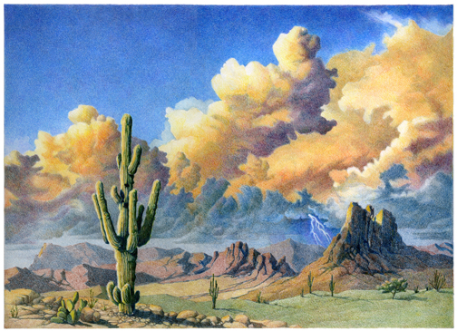 Desert Landscape of Superstition Mountains