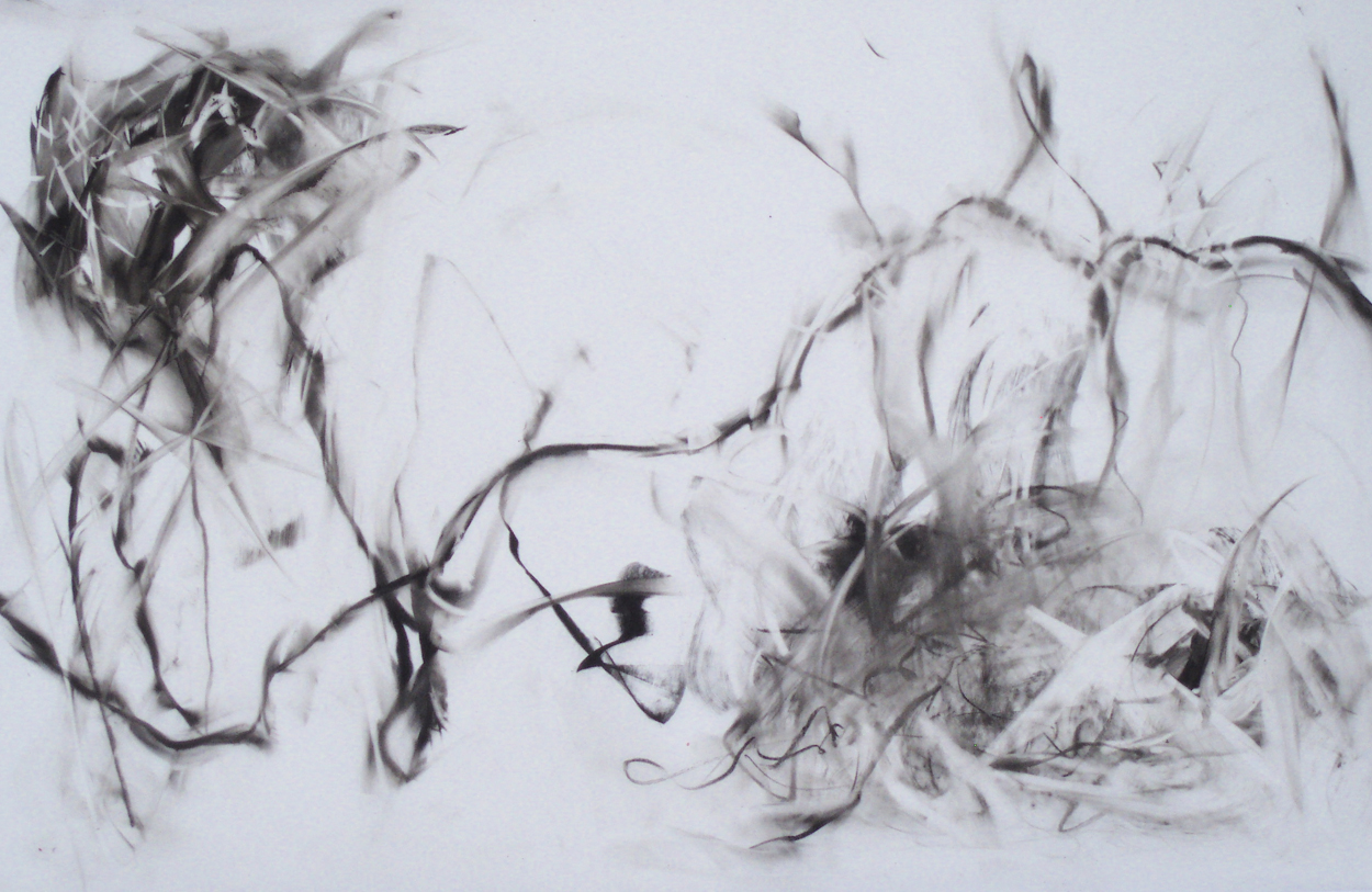 paper charcoal abstract The effectiveness of paper charcoal as fuel source the effectiveness of a homemade insect repellent introduction: abstract insect repellents are important tools for prevention of insect-borne diseases as well as painful or uncomfortable insect bites.