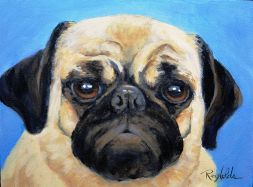 Portrait of Pet Pug Dog