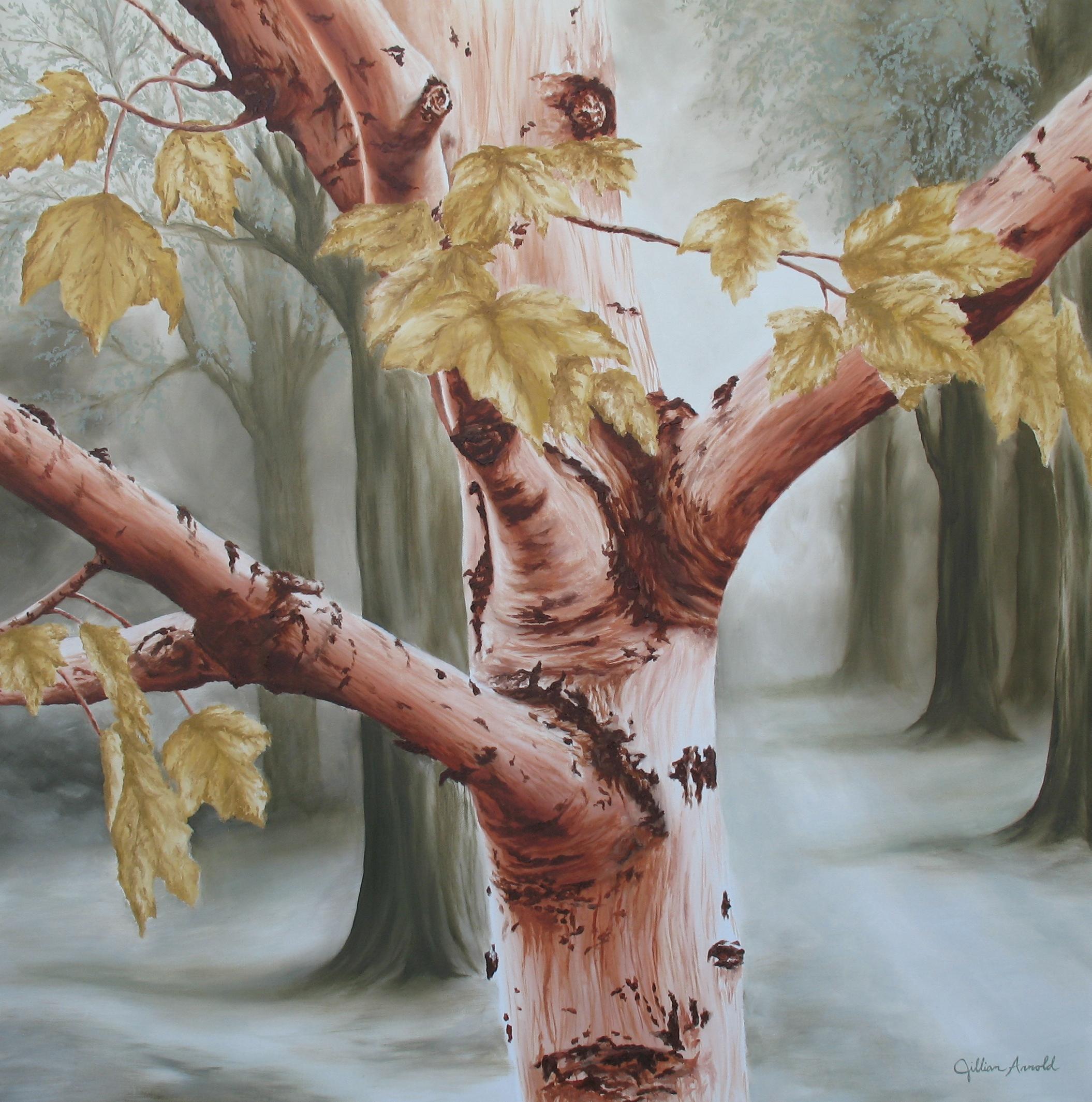 Earthtone Birch. oil on canvas, 30 x 30 inches. 2007
