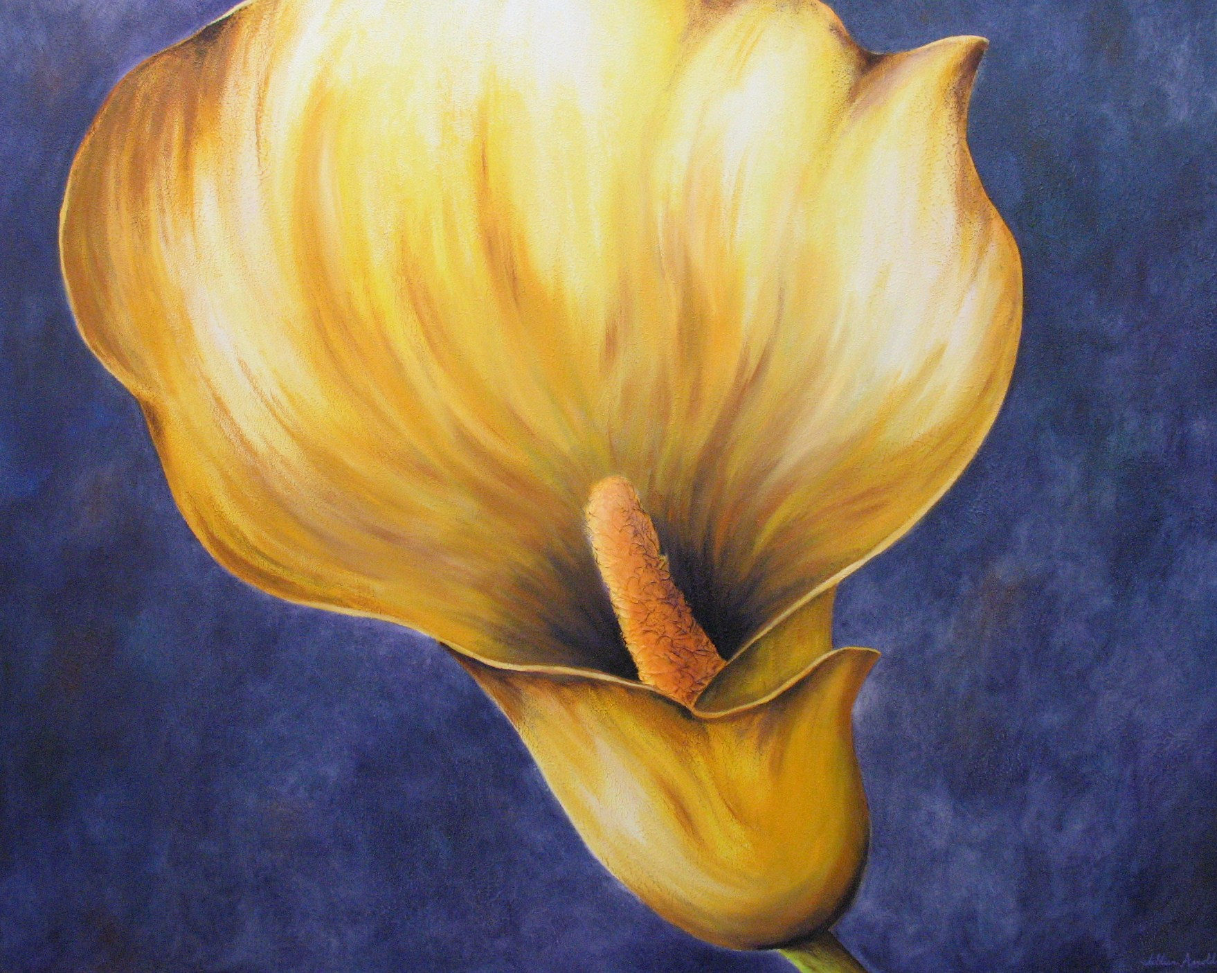 Lily. oil on canvas, 48 x 60 inches. 2006