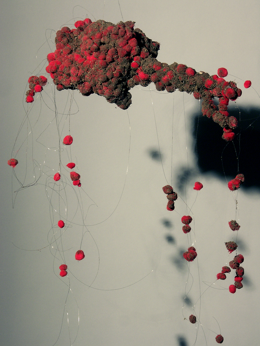 Kathy deRosas, Formed Elements II, mixed media, 2010