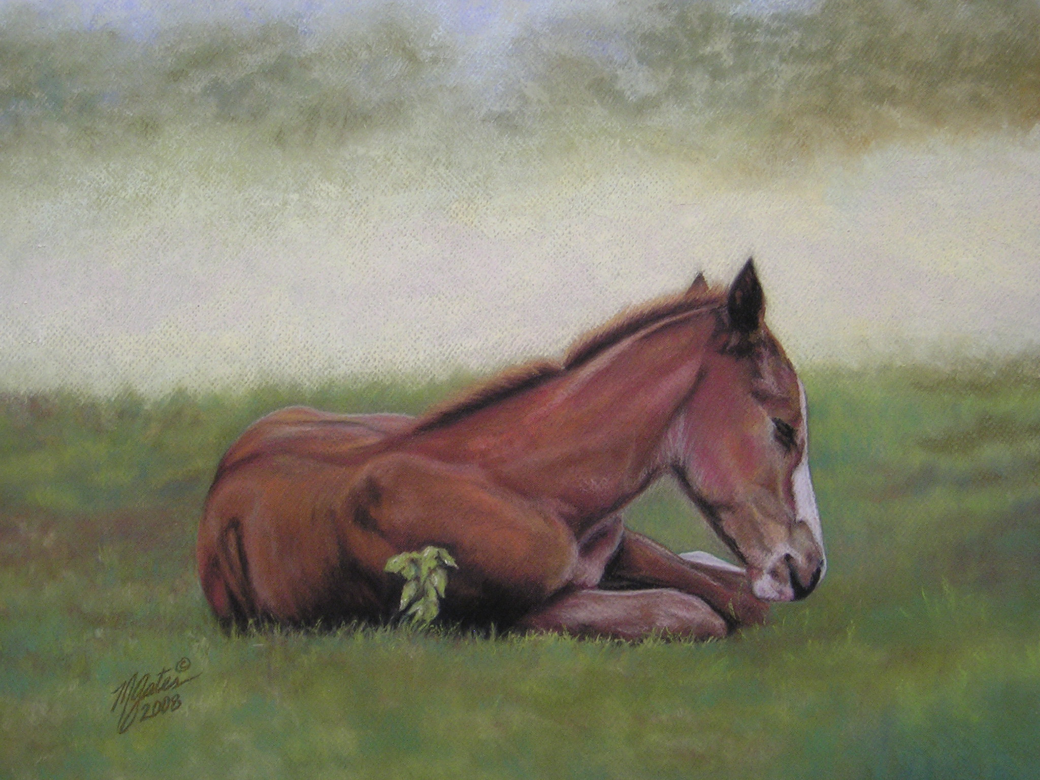 Pastel painting of foal with poison ivy
