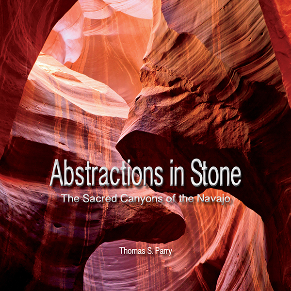 Abstractions in Stone Cover
