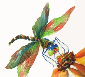 Watercolor Painting of a dragonfly