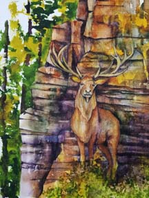 Elk Hiding Among the Cliffs by Cathy P.