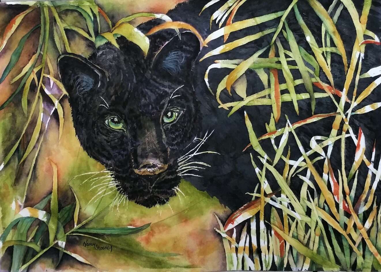 Panther by Nancy S.