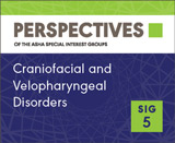 SIG 5 Perspectives Vol. 24, No. 1, August 2014
