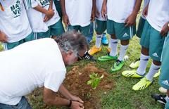 Luiz reflorestamento thumbnail