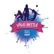 Volei nestle site