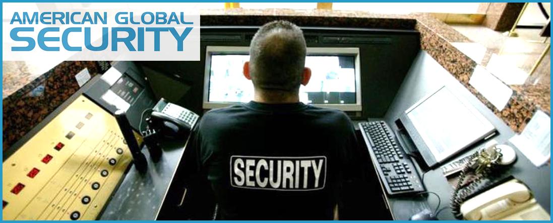 Camera Monitoring Services