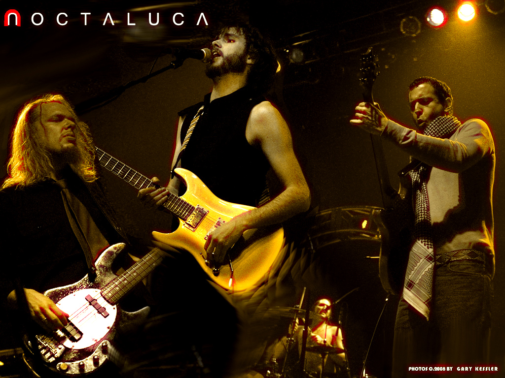 Noctaluca Photo