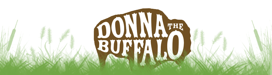 Donna the Buffalo Photo