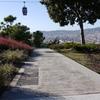 Reforma d'urbanització passeig dels cims Fase F a Montjuïc