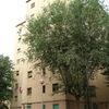 Redacció del projecte de deconstrucció de tres edificis plurifamiliars aïllats al carrer Alfons XIII 341, Jumilla 58 i Jumilla 51 al barri de Sant Roc de Badalona