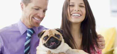 Man and woman with Pug