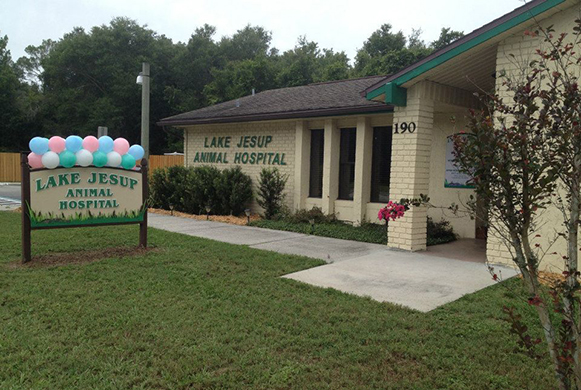The outside of our veterinary hospital
