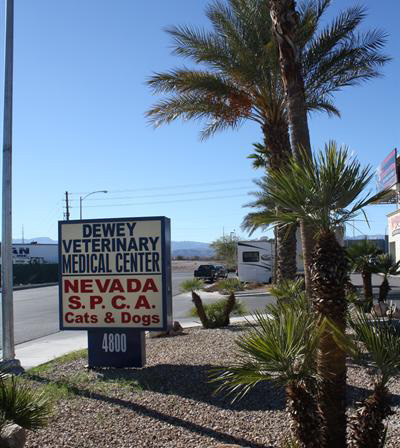 The sign outside of our veterinary hospital in Las Vegas, NV