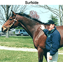 Dr. Yocum with horse Surfside